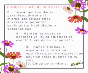 Resiliencia (5)